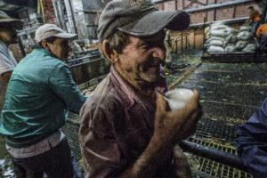 coffee-wet-drop-farmer-1-of-1